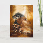 Doxies Dappled In Sunshine ArtCard Card