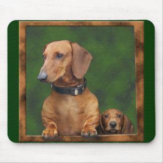 Doxies in the mousepad! mouse pad