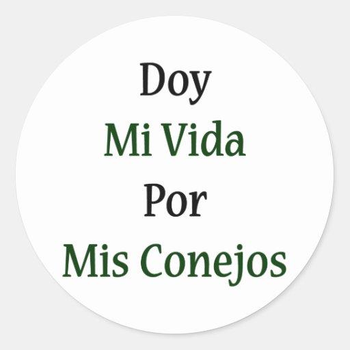 Doy Mi Vida Por Mis Conejos Classic Round Sticker