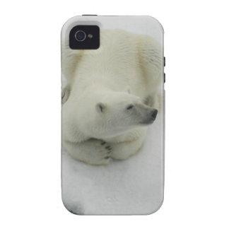Dozing Polar Bear iPhone 4/4S Cover