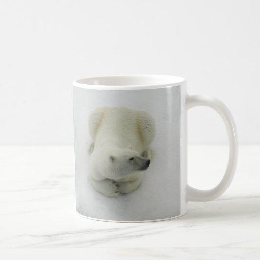 Dozing Polar Bear Classic White Coffee Mug
