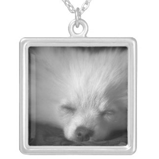 Dozing Pomeranian Square Pendant Necklace