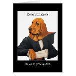 DR069 Bloodhound (Chien De Saint Hubert) grad card