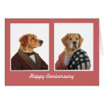 DR147 Golden retriever anniversary card