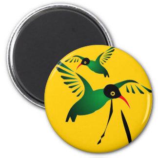 Dr Bird Magnet