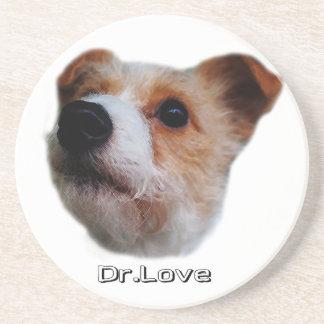 Dr. Love Coaster