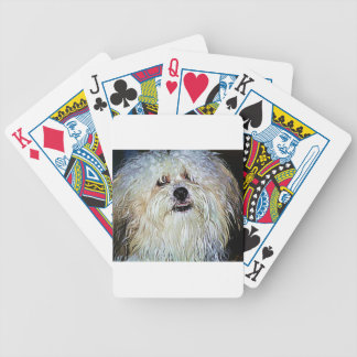 Dr Watson Bicycle Playing Cards