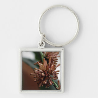Dracaena Fragrans Silver-Colored Square Keychain
