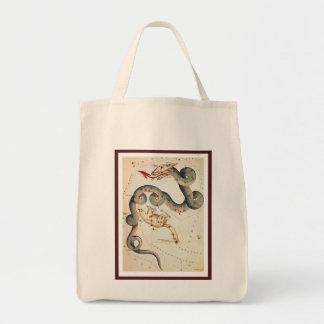 Draco and Ursa Minor Bag