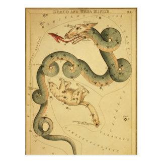 Draco de la impresión de la astronomía del vintage postal