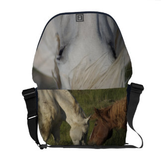Draft Horse Bag