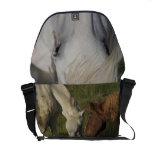 Draft Horse Bag Messenger Bag