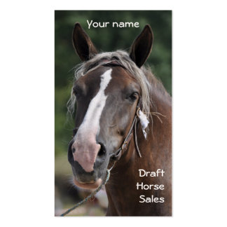 Draft horse business card