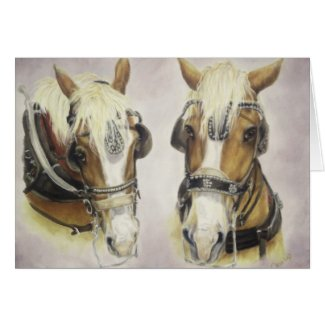 Draft Horse Card