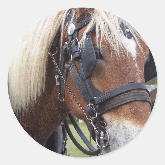Draft Horse Classic Round Sticker