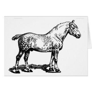 Draft Horse -- Dappled Card