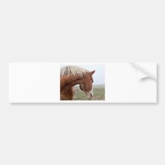 Draft Horse in the Mist - Stunning Western Bumper Sticker