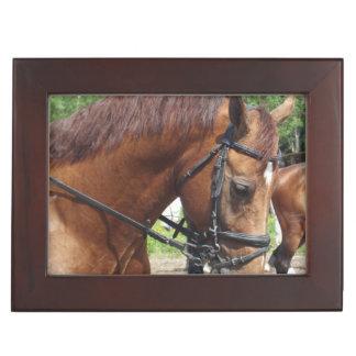 Draft Horse Keepsake Boxes