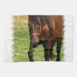 Draft Horse Kitchen Towel