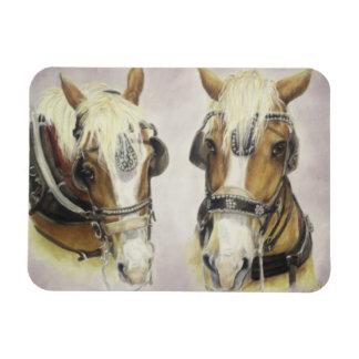 Draft Horse Magnet