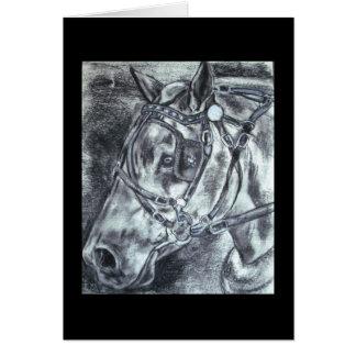 Draft horse notecards card