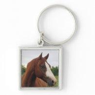 Draft Horse Photo Keychain