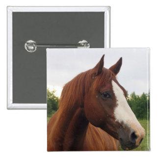 Draft Horse Photo Square Pin