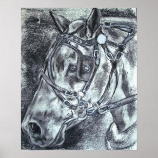 Draft horse print