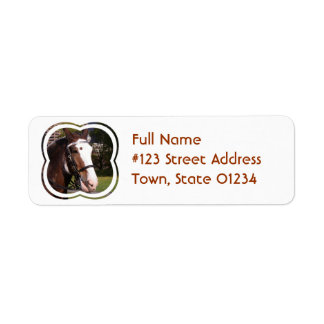 Draft Horse Rescue Mailing Label