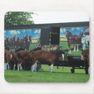 Draft Horse Show Mouse Pad