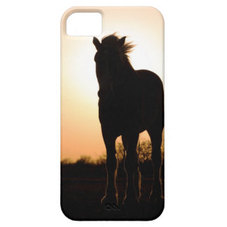 Draft horse silhouette iPhone SE/5/5s case