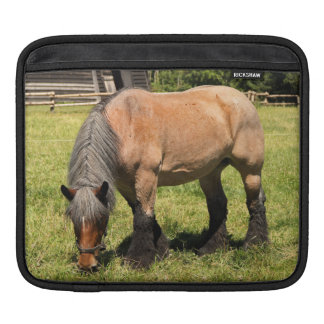 Draft Horse Sleeves For iPads