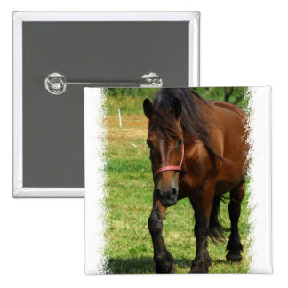 Draft Horse Square Pin