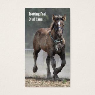 Draft horse stud farm business card v2
