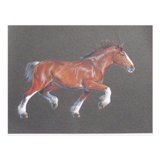 Draft  Horse Trotting Postcard