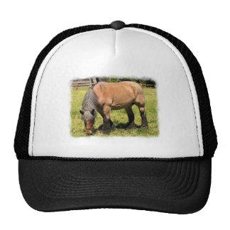 Draft Horse Trucker Hat