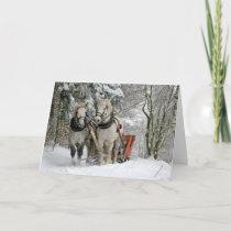 Draft Horses Christmas Holiday Card