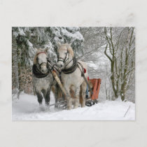 Draft Horses Christmas Holiday Postcard