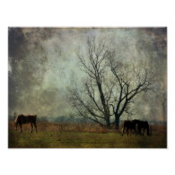 Draft Horses in the Field Poster