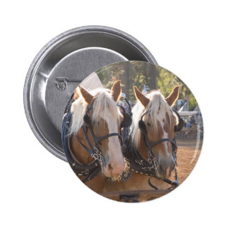 Draft Horses Pinback Button