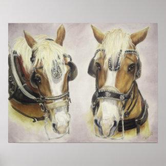 Draft Horses Poster