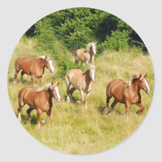 Draft Horses running in field Stickers