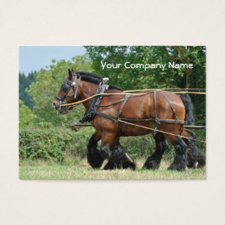 Draft horses with feathered legs business card