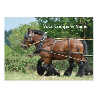 Draft horses with feathered legs large business card