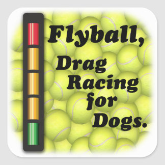 Drag Racing for Dogs Square Sticker