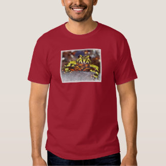 Drago the Fire Belly Toad Shirt