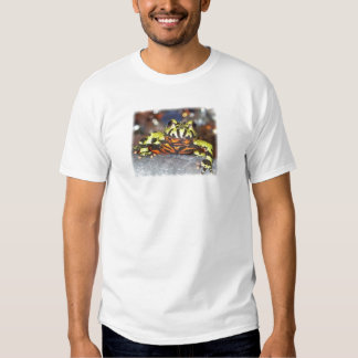 Drago the Fire Belly Toad Tee Shirt