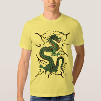 Dragon 1 t-shirts
