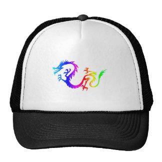 Dragón 6 del arco iris gorro