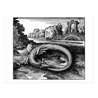 Dragón alquímico de Ouroboros Tarjetas Postales